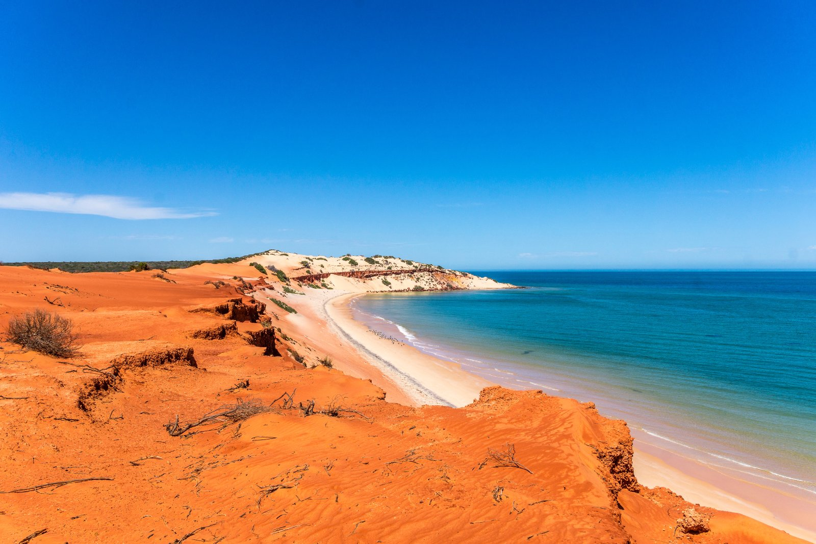 Australien ist unheimlich divers. Von tiefstem Regenwald bis zu schroffen Steinwüsten reicht die Palette – da ist für jeden etwas dabei.