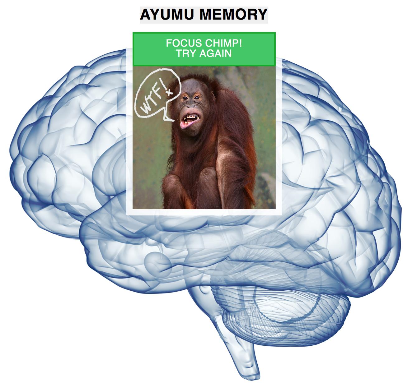 WTF_ape_brain