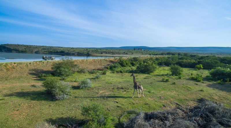 Drohnenbild Garden Route Kwandwe 2 (c) Rhino Africa
