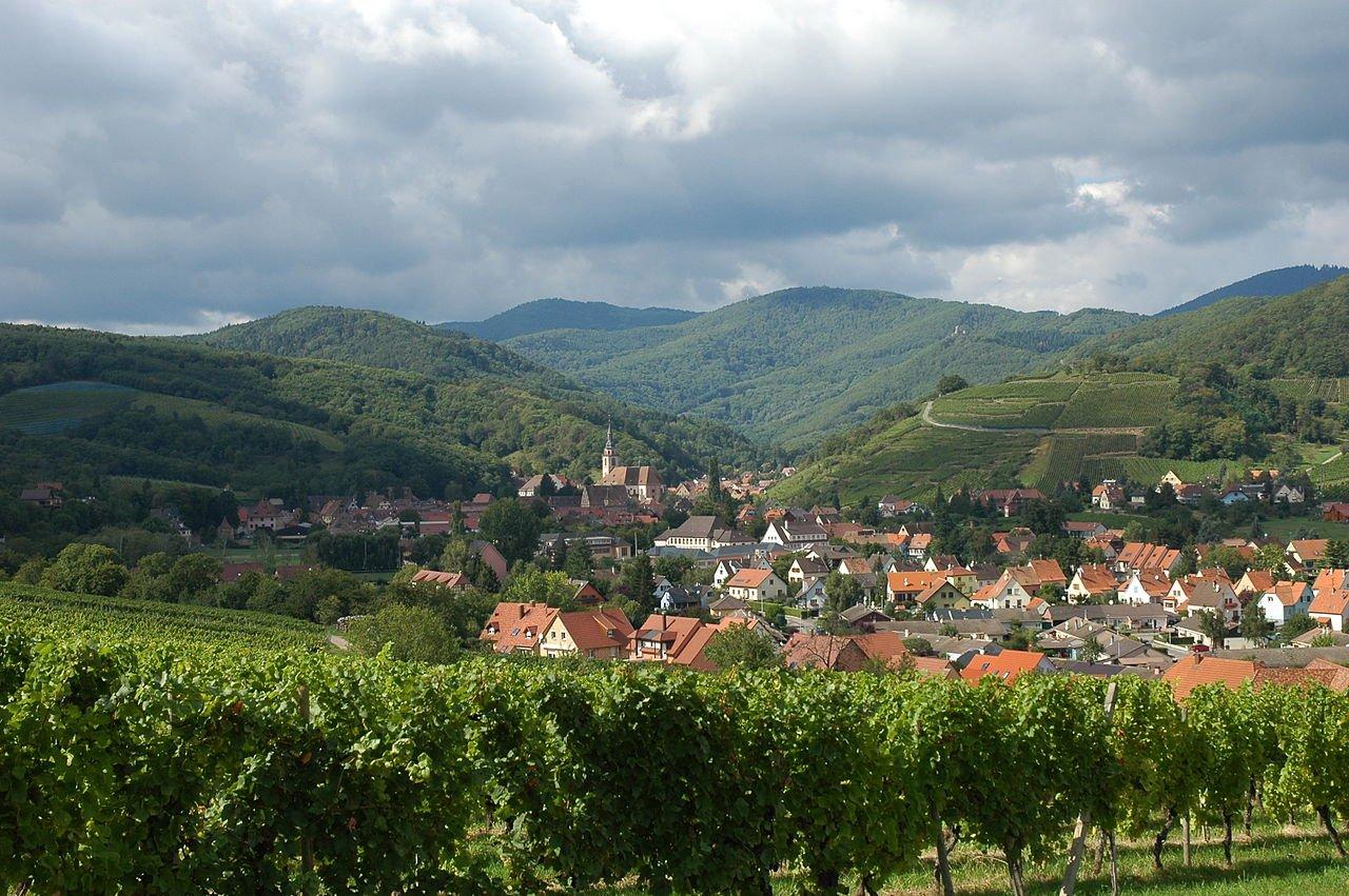 Route de Vin Elsass