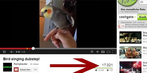 Youtube Views - Vogel singt Dubstep